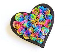 قلب رنگین کمان 247x185 - صفحه اصلی